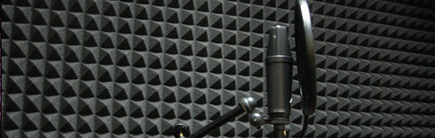 Vocal Booth microphone
